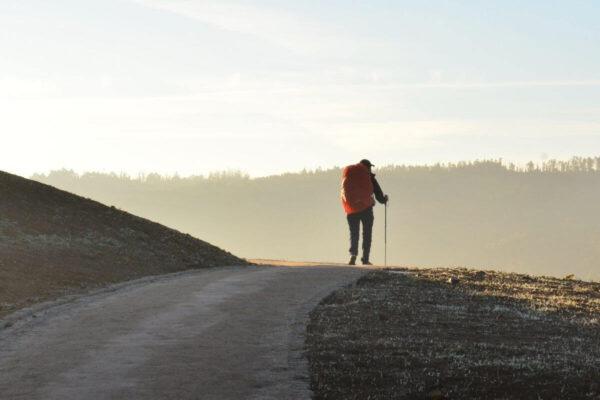 Hvad er Caminoen for noget?